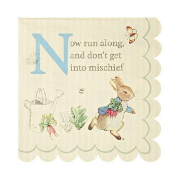Peter Rabbit Paper Party Napkins -  pack of 20, Small